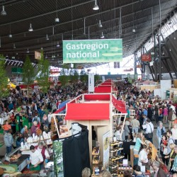 Turmoil on the Slow Food Fair